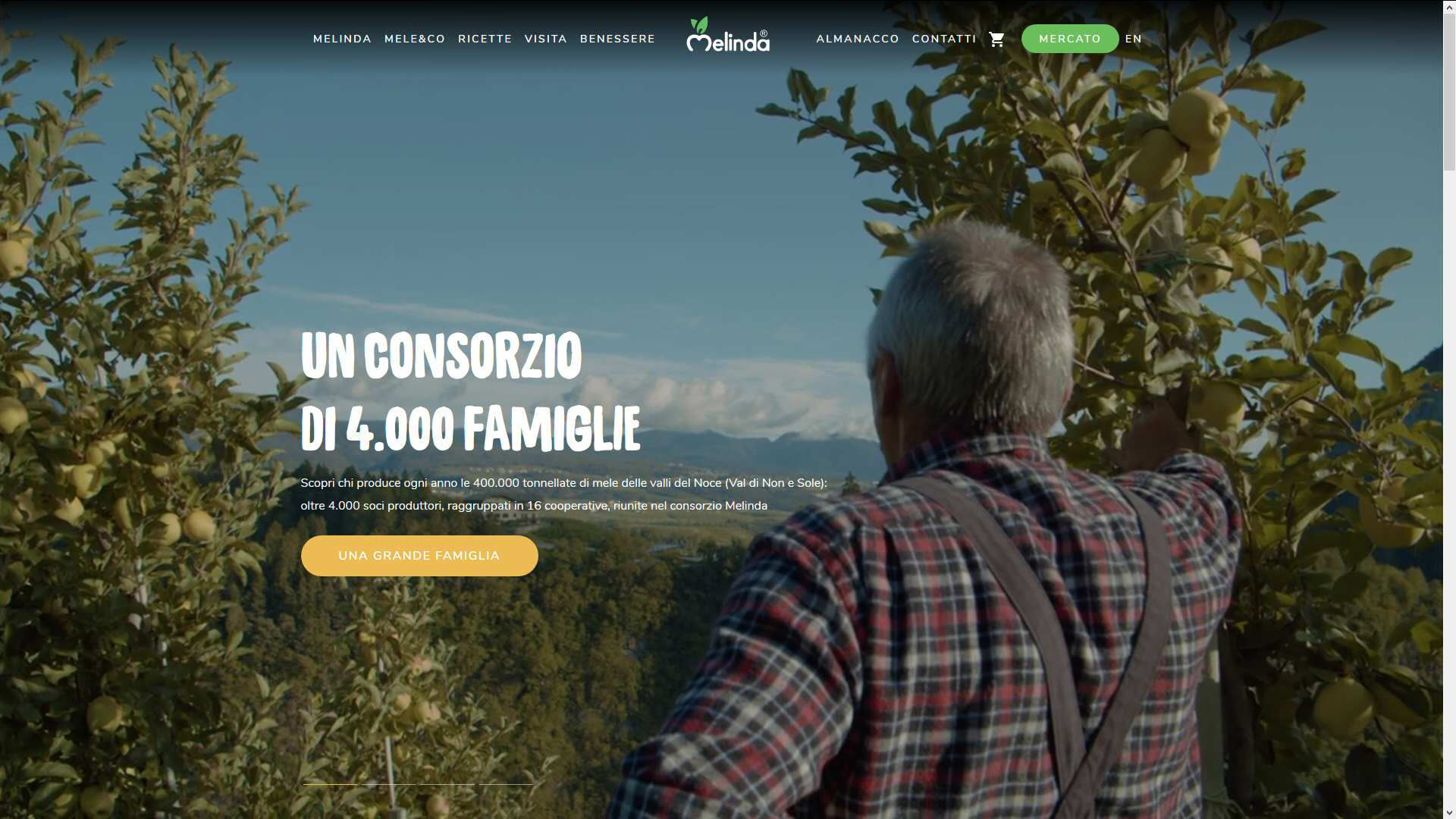 Melinda: strategia digitale e concept, contenuti/SEO/website
